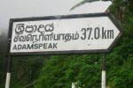lanka language
